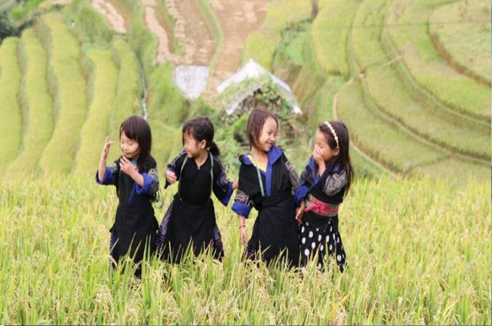 Sapa – Bac Ha 03 Days And 04 Nights