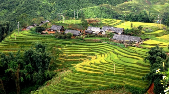 Full Day Biking Tour to Muong Hoa Valley – Ban Ho Village